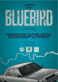 bluebird-211x300_4