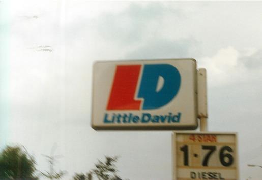 Little Davidx